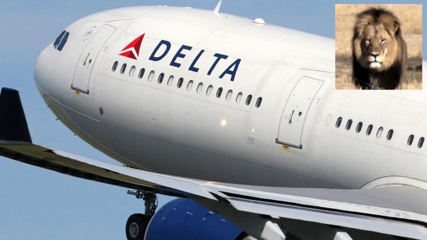 Delta-Leon