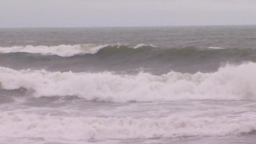SANTA CRUZ WAVES RAW FOSTER - 16010621