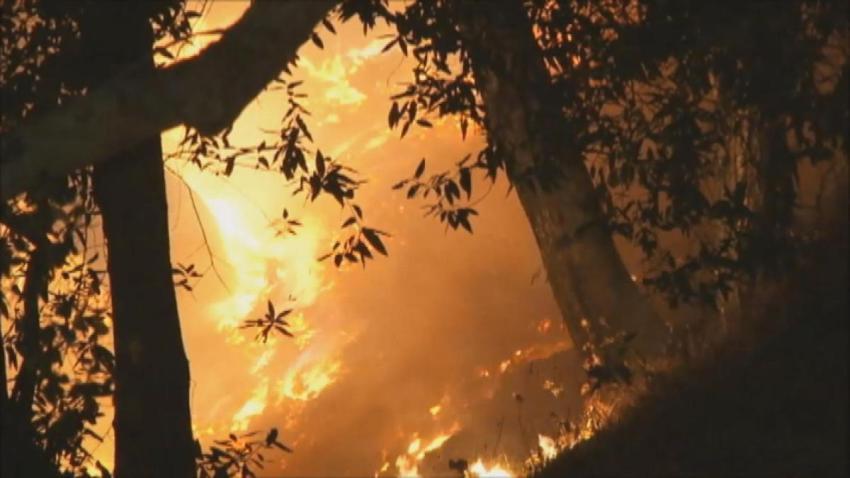 T5A SAN JOSE BRUSH FIRE KATHERINE VO - 00000000