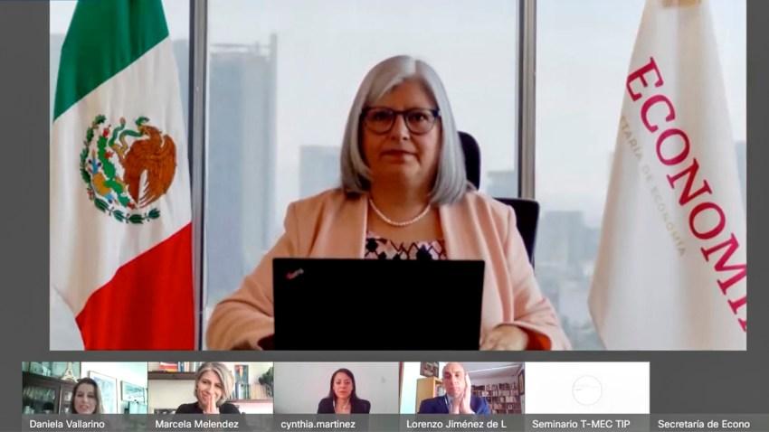 Secretaria de Economía en reunión virtual