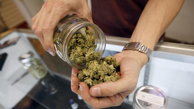 tlmd_berkeley_marihuana_medicinal