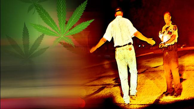 tlmd_marihuana_policia_conductor