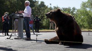 John Cox and a bear.