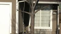 Según oficiales, una mujer murió luego de que le dispararan dentro de su casa en San José.