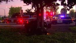 Conductor detenido por atropellar a varias personas en Sunnyvale