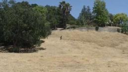 Inspectores recorren terrenos de pasto seco