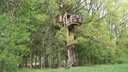 Vacaciones soñadas en una casa en la copa de un árbol