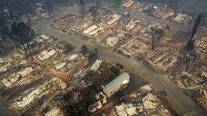 Presidente Trump visitará zonas devastadas por incendios