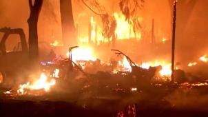 Aumenta a 44 cifra de muertos por incendios en la Bahía