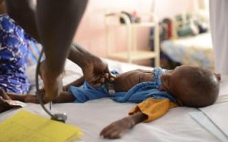 Sequía deja sin alimentos a 245 mil personas en Senegal