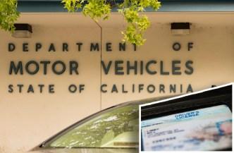 Falla del DMV pudo afectar la renovación de tu ID
