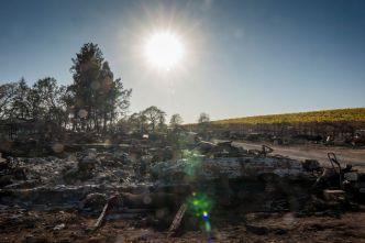 Cal Fire: Incendio Kincade 100% contenido
