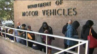 Reporte: disminuye el tiempo de espera en el DMV