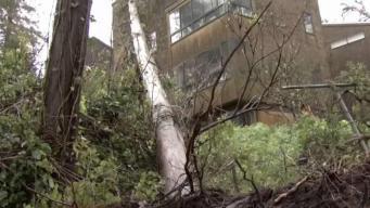 Lluvias continúan causando estragos a lo largo de la Bahía