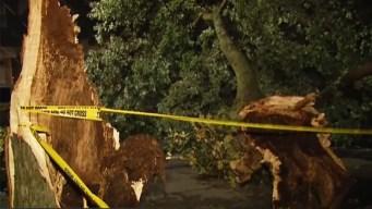 Confirman que tornado tocó tierra en el corazón de Nueva York