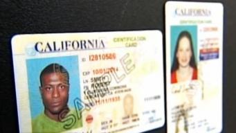 California emitirá nuevas licencias de conducir para el 2018