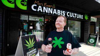 Canadá, el nuevo paraíso de la marihuana legal