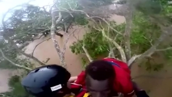 Dramático: lo rescatan subido a una planta tras brutal ciclón