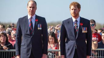Príncipes William y Harry lamentan última plática con Diana