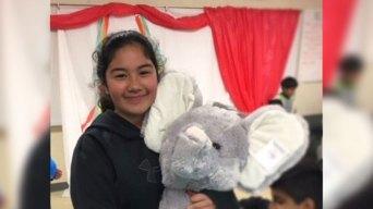 Policía busca niña desaparecida en Mountain View