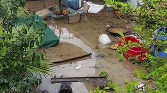 Tormenta en el Área de la Bahía causa estragos a su paso