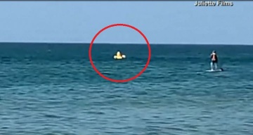 Pánico en día de playa: niño a la deriva cae de patito inflable
