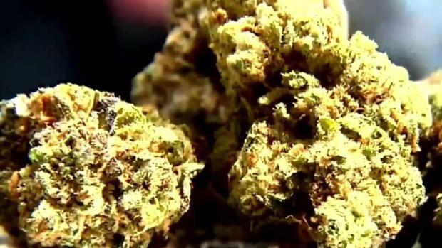 [TLMD - LA] Aumentan arrestos por tráfico de drogas en LAX
