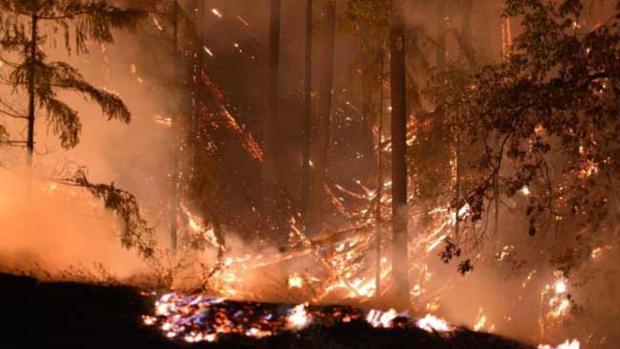 Incendio Carr deja muerte, destrucción y desolación al norte de California