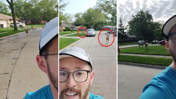 """[TLMD - NATL] Viral: perseguido por """"sospechosos"""" decide grabarse corriendo"""