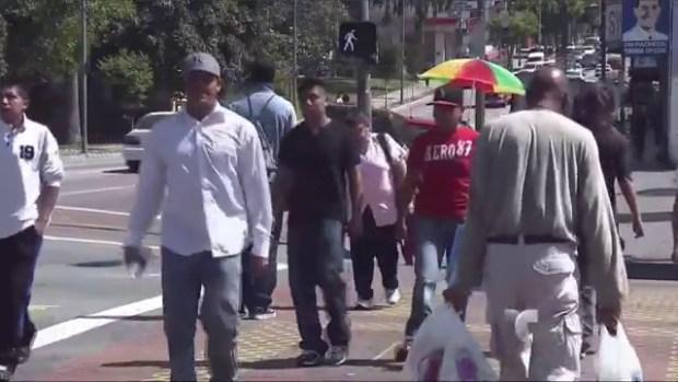 Video: Hispanos cerca de predominar en CA