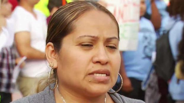 [TLMD - NY] Inmigración: Claman licencia de conducir para todos