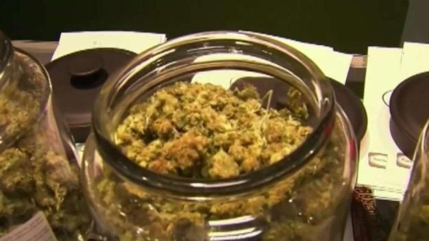 Aprueban entrega a domicilio de marihuana para uso medico