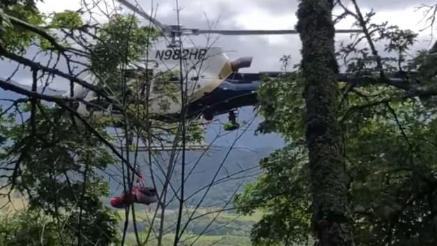 Mujer viva de milagro tras caer a 450 pies de altura en Napa