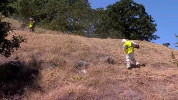 Residentes deben limpiar el pasto seco para evitar incendios