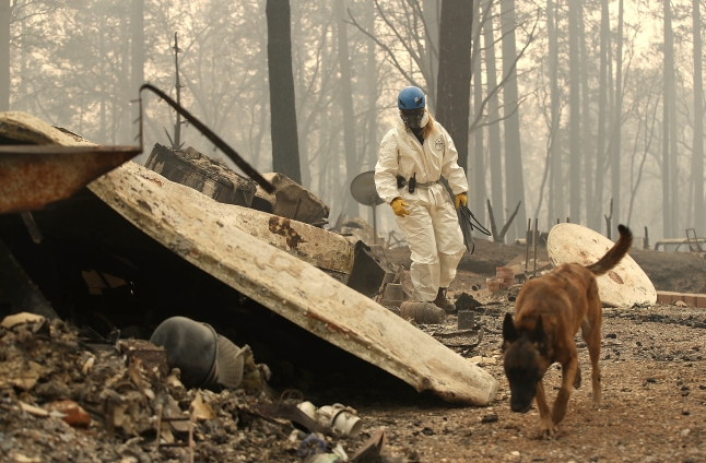 Expertos: Incendio Camp, el más mortal en un siglo