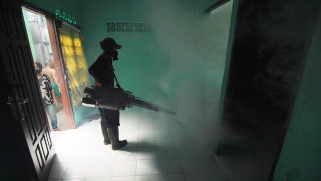 Brasil: se desploman casos de dengue, zika y chikunguña
