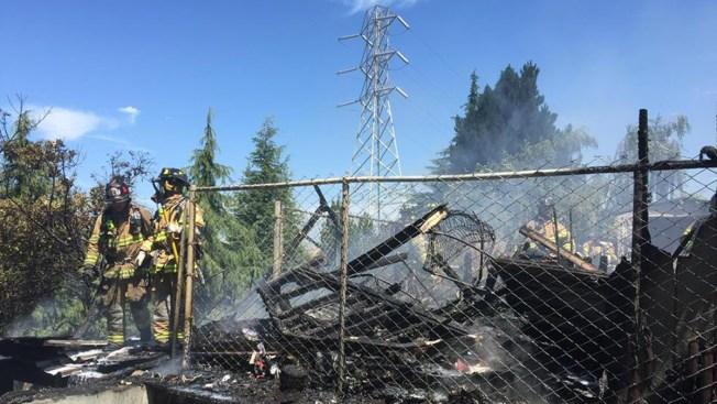 Animal pudo haber provocado fuego de maleza en Martinez