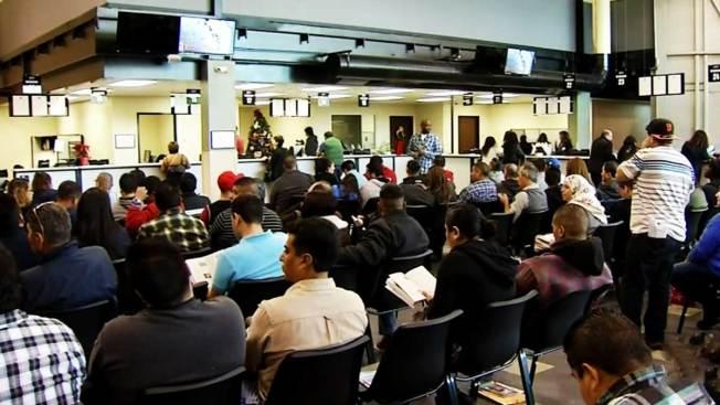 Casi 50,000 inmigrantes solicitan la licencia