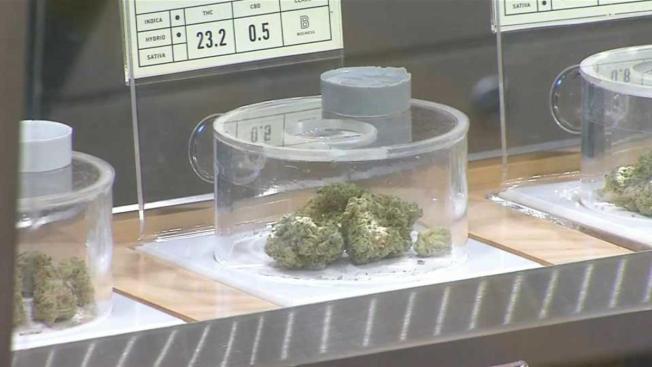 San José líder en la venta de marihuana para uso recreativo