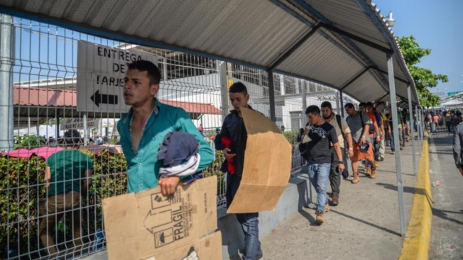 ONG acusa uso de migrantes con fines políticos