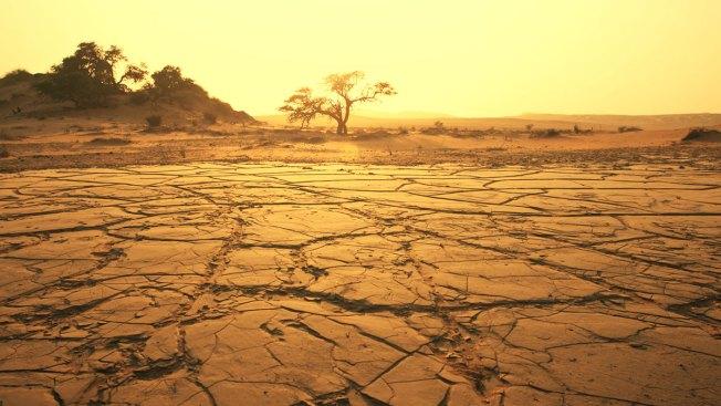 Californianos no hacen lo suficiente para responder a la sequía