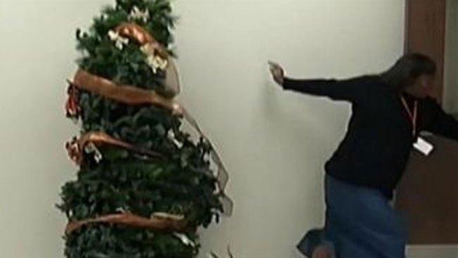Mira por qué huye aterrorizada del árbol