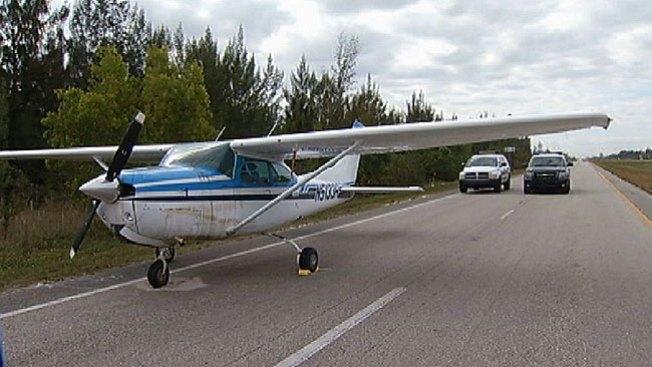 Un pájaro se estrella contra avioneta
