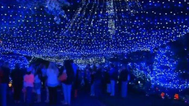 Récord mundial de iluminación navideña