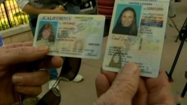 Foro sobre licencias para indocumentados