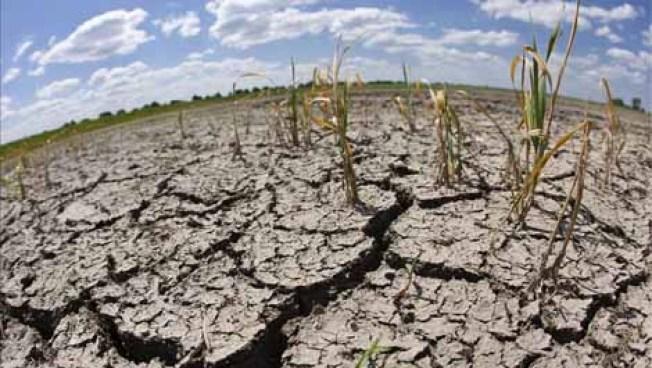 California muestra su fuerza en pleito de agua con agricultores